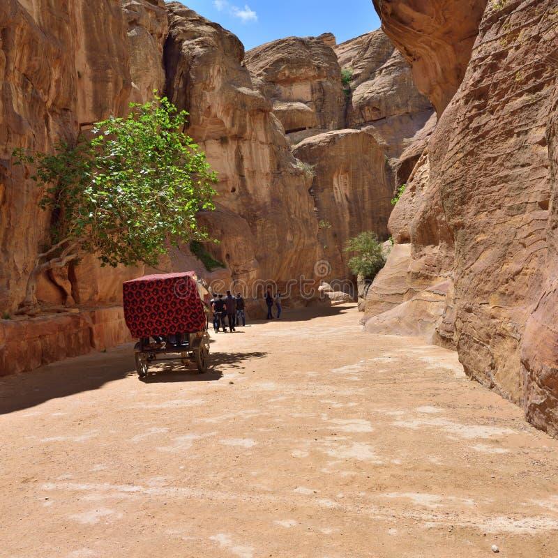 Barranco de Siq en el Petra imagenes de archivo