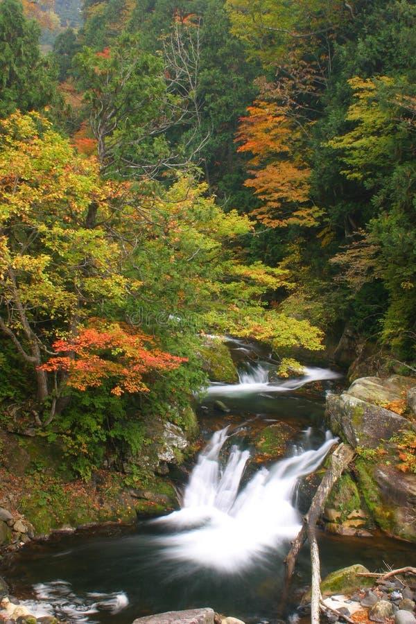 Barranco del otoño fotos de archivo