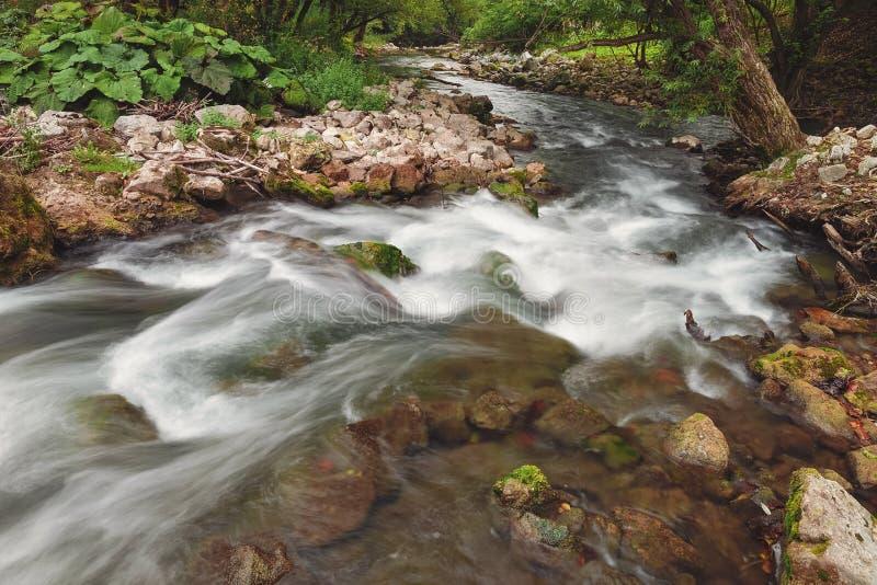 Barranco del río de Gradac en verano tardío foto de archivo