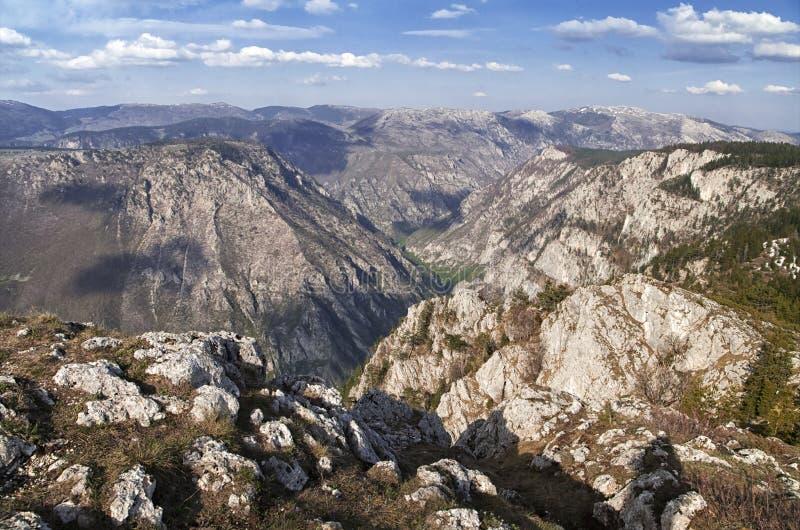 Barranco del río Tara, Montenegro fotografía de archivo libre de regalías