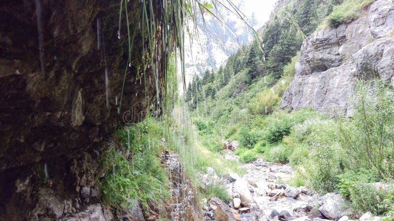 Barranco Dripping Springs de Lost Creek foto de archivo