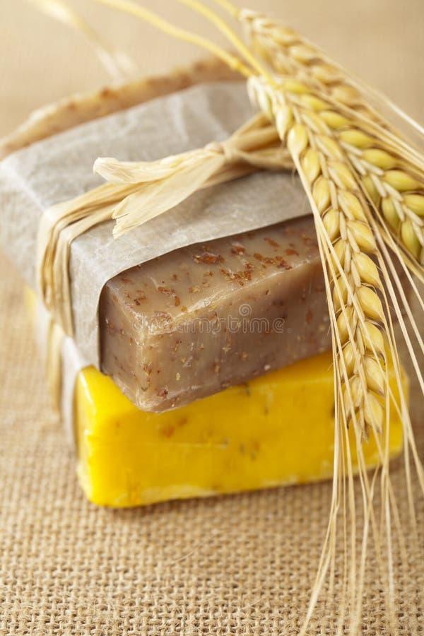 Barras caseiros do sabão com spikelets do trigo, imagem de stock royalty free