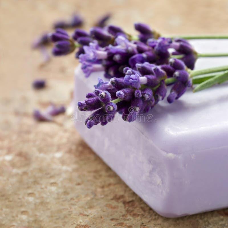 Barre de savon de station thermale de lavande images stock