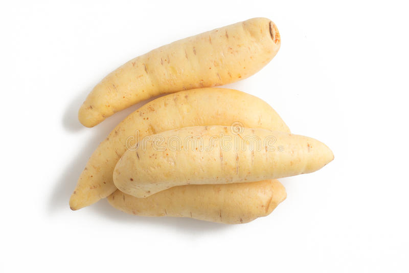 Barred Potato. Baroa. On white background royalty free stock photo