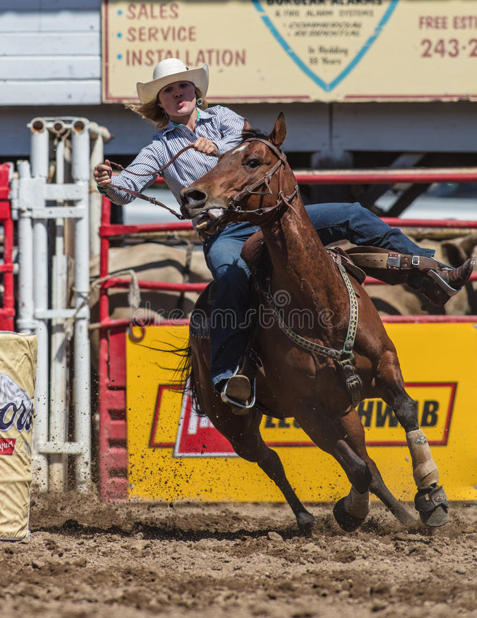 Barrel Racing Cowgirl. Barrel racing action at the Cottonwood Rodeo in northern California royalty free stock images