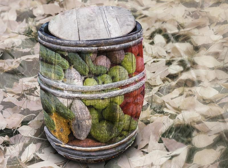 Barrel of vegetables on the background of autumn leaves. Double exposure. stock photo