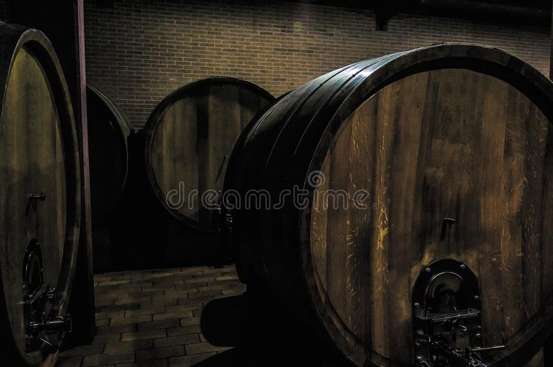 Barrels full of grapes just after the harvest in Barolo Italy stock photos