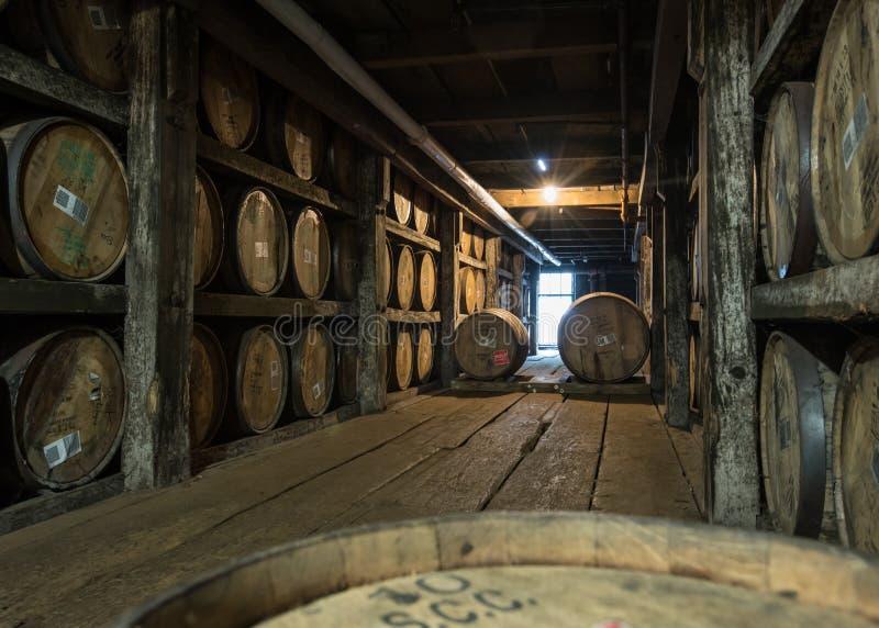 Barrels i Walkway på Distillery royaltyfri bild