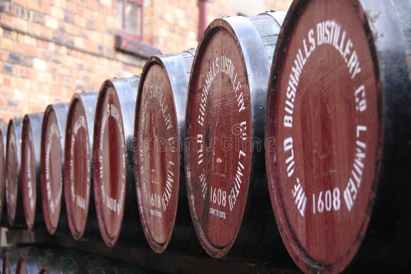 Barrels at Old Bushmills Distillery. BUSHMILLS, COUNTY ANTRIM, NORTHERN IRELAND - 30 AUGUST 2009: The barrels at the Old Bushmills Distillery royalty free stock photos