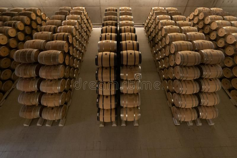 Barrels in a row in a Rioja Alavesa winery royalty free stock photo