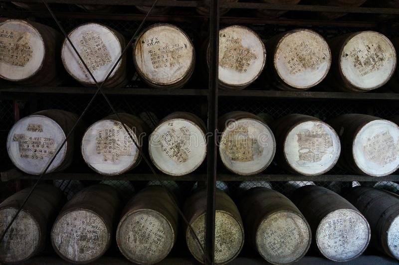 Barrels in a rum factory royalty free stock images