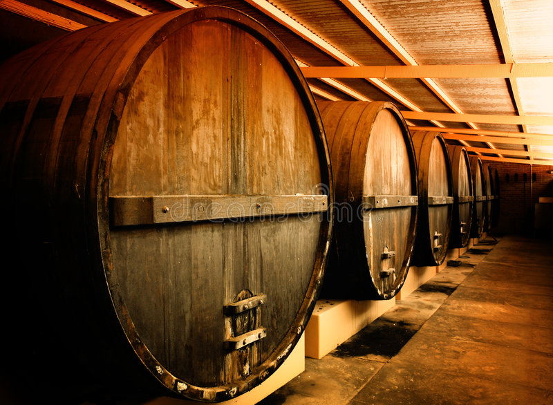 barrels vinodlingen royaltyfri bild