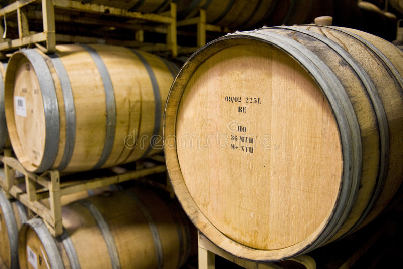 barrels vinodlingen royaltyfri foto