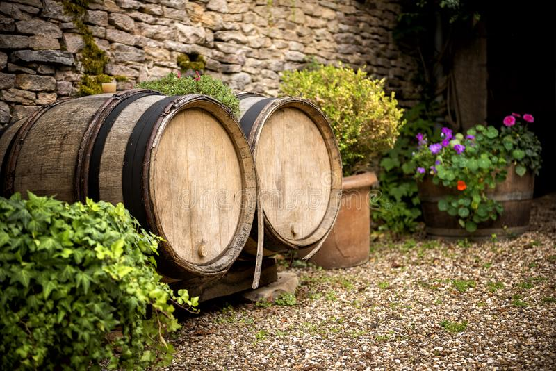 Barrels for wine in Burgundy. France. BURGUNDY, FRANCE - Barrels for wine. Burgundy region of France famous for its excellent wines appreciated all over the royalty free stock image