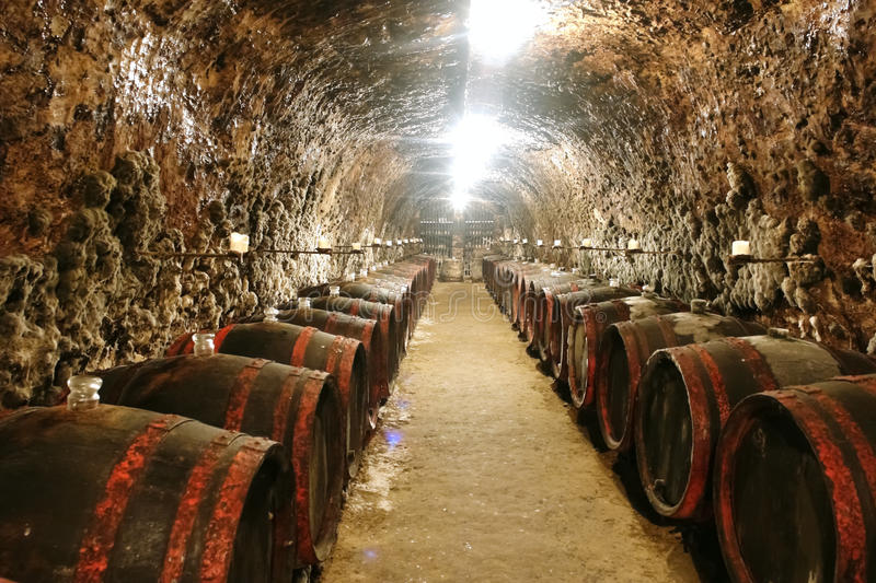 Barrels in wine cave. Old caves with barrels with wine from Tokaj valley in Slovakia stock images