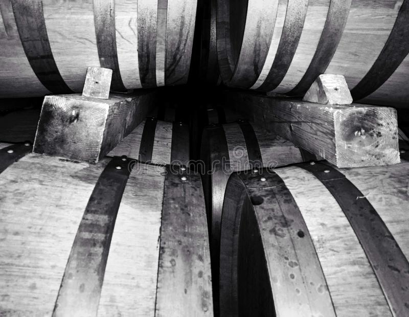 Barrels in a winery celar. Close up shot of ermitage wine barrels. Rows of wooden barrels used for wine fermentation / maturing royalty free stock image