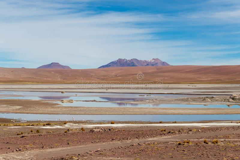 Background with barren desert scenery in the Bolivian Andes, in the Nature reserve Edoardo Avaroa stock image