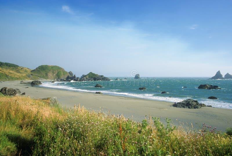 Barren Oregon beach stock image