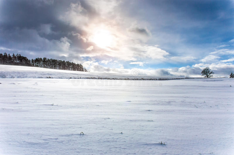 A barren snow covered land with a few trees seen here and there royalty free stock photography
