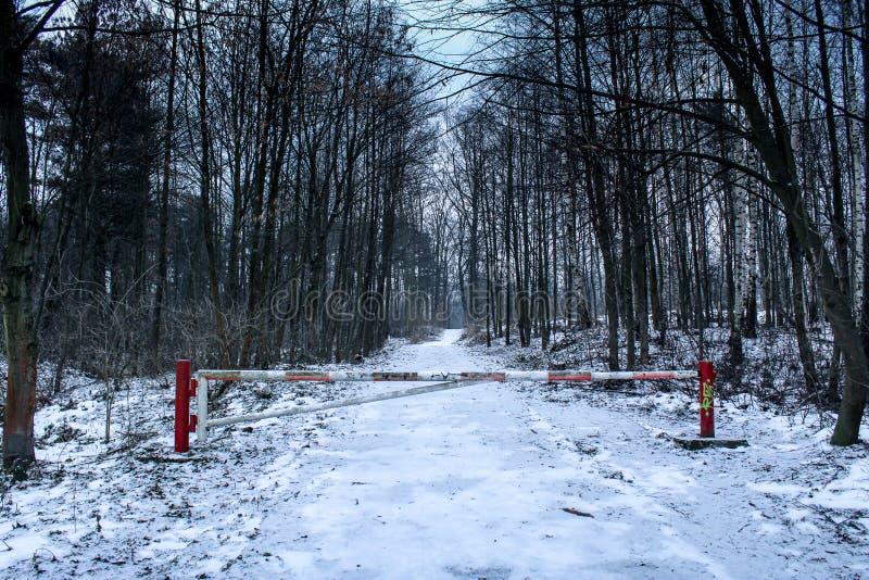 Barrera en el bosque fotografía de archivo libre de regalías