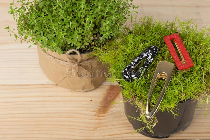 barrette, agrafe de cheveux, épingles à cheveux, ornements de cheveux, décoration, bijoux sur l'herbe/usine sur la table en bois photographie stock libre de droits