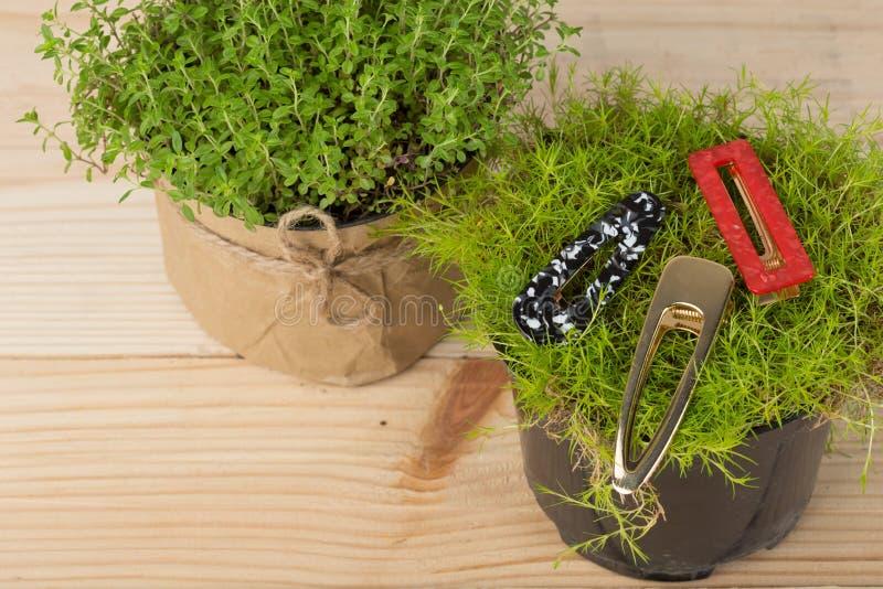 barrette, włosiana klamerka, hairpins, włosów ornamenty, dekoracja, biżuteria na trawie, roślinie na drewnianym stole/ fotografia royalty free