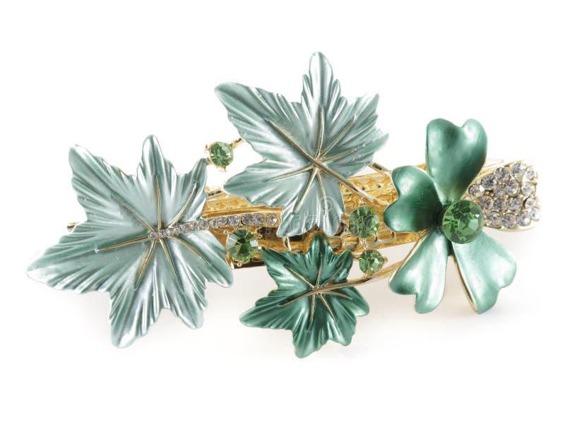 barrette zieleń zdjęcie royalty free