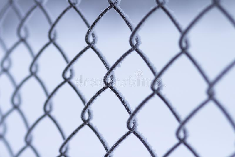 Barrière à carreaux de grille plan rapproché de mur de trellis Conclusion dans le concept de prison captif photos stock