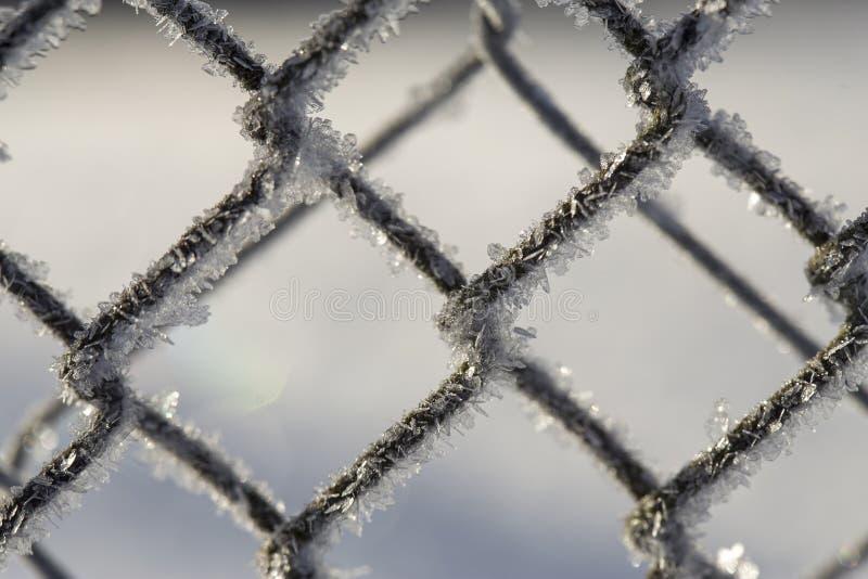 Barrière congelée faite en maille en métal couverte de cristaux de gel, photographie stock libre de droits