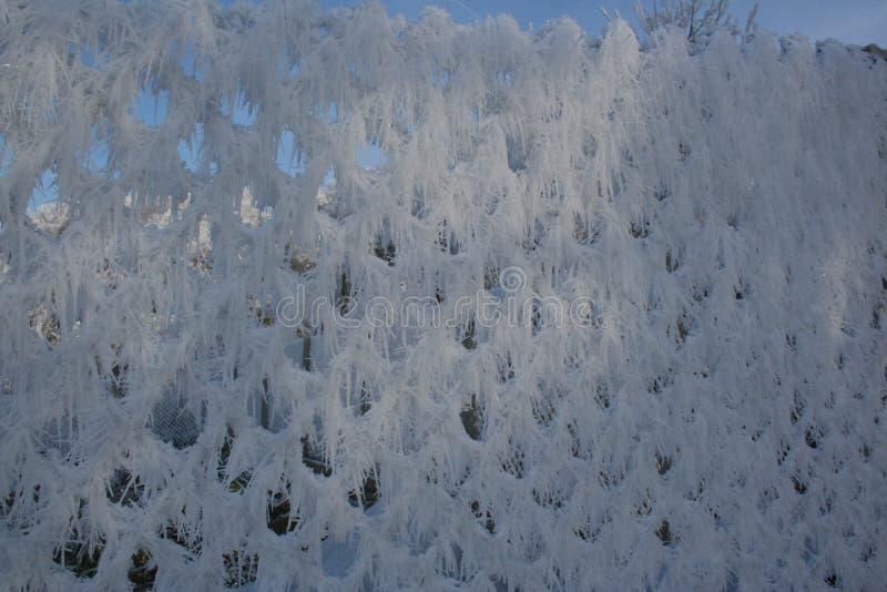 Barrière d'hiver photo libre de droits