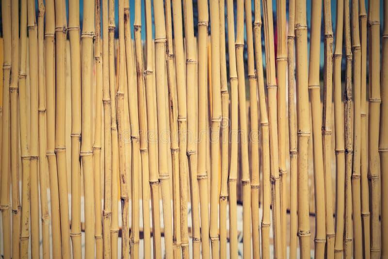 Barrière d'un bambou sec avec le rétro effet photographie stock