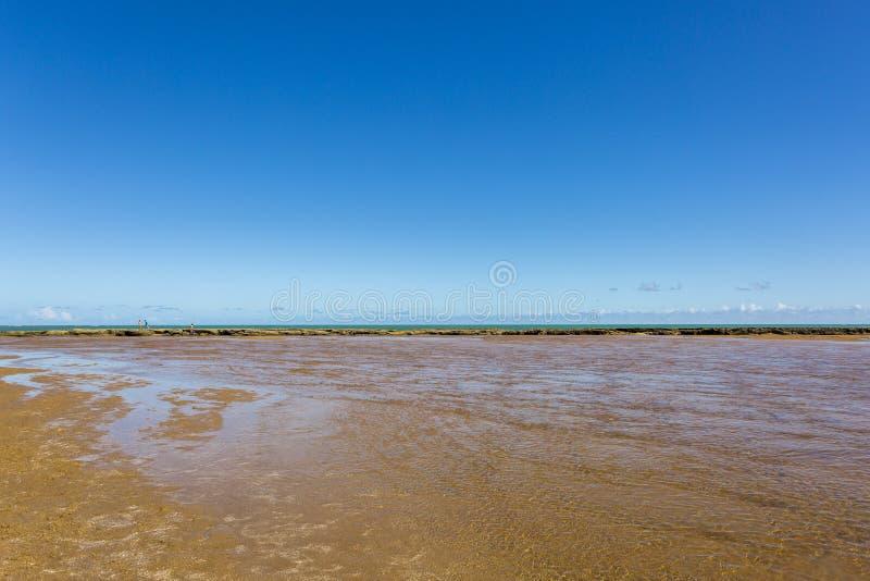 Barrière de coraux sur la plage photo libre de droits