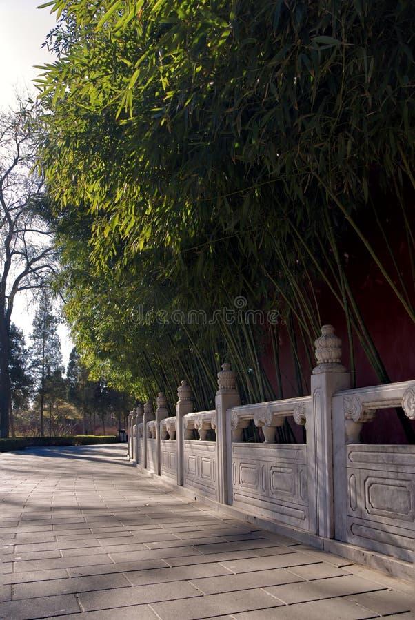 Barrière de marbre antique le long des chemins à feuilles persistantes dans une forêt en bambou en parc de Jingshan images stock