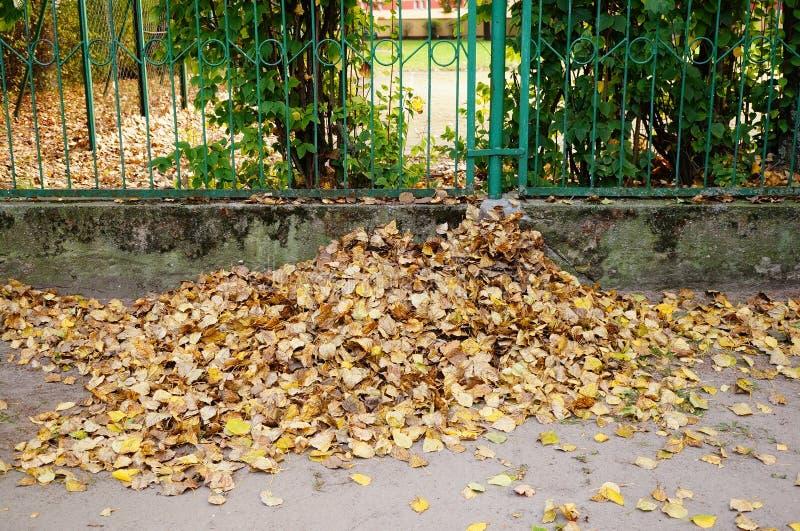 Download Barrière de parc image stock. Image du stationnement - 45350409