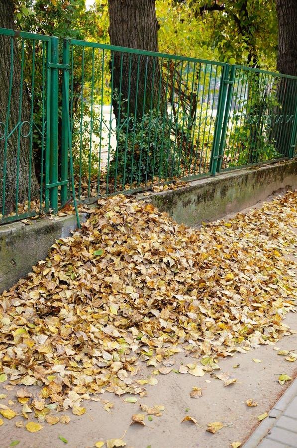 Download Barrière de parc image stock. Image du lames, arbre, horizontal - 45350425