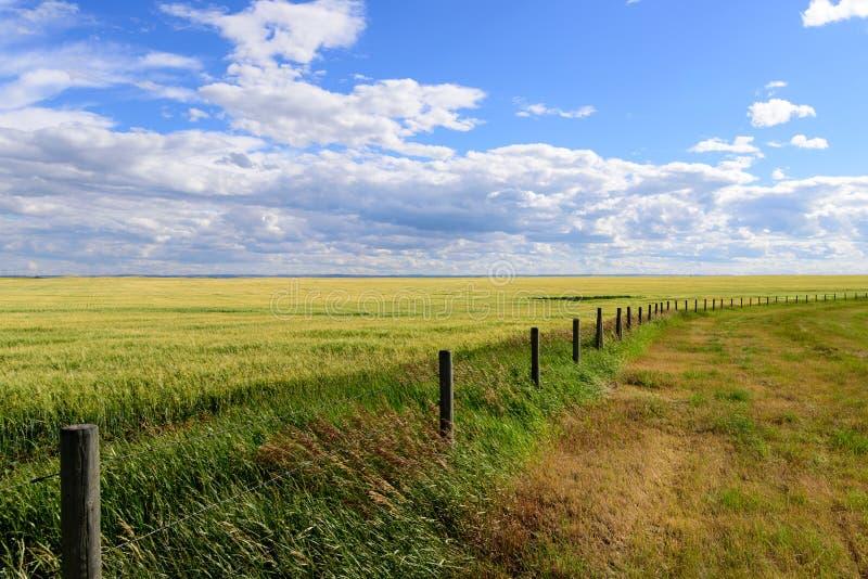 Barrière de prairie photos libres de droits