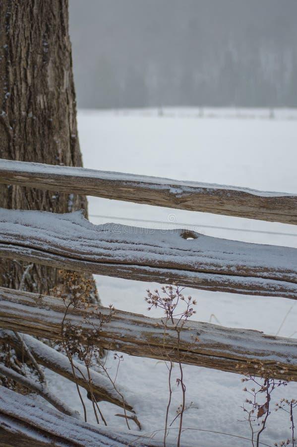 Barrière de rail rustique de cèdre avec le saupoudrage de neige photo stock