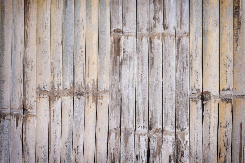 Barrière en bambou de texture, fond naturel, mur en bois brun clair photos libres de droits