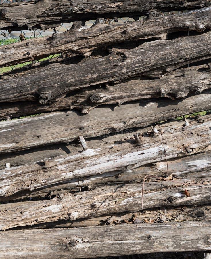 Barrière en bois Texture de rondin photo stock