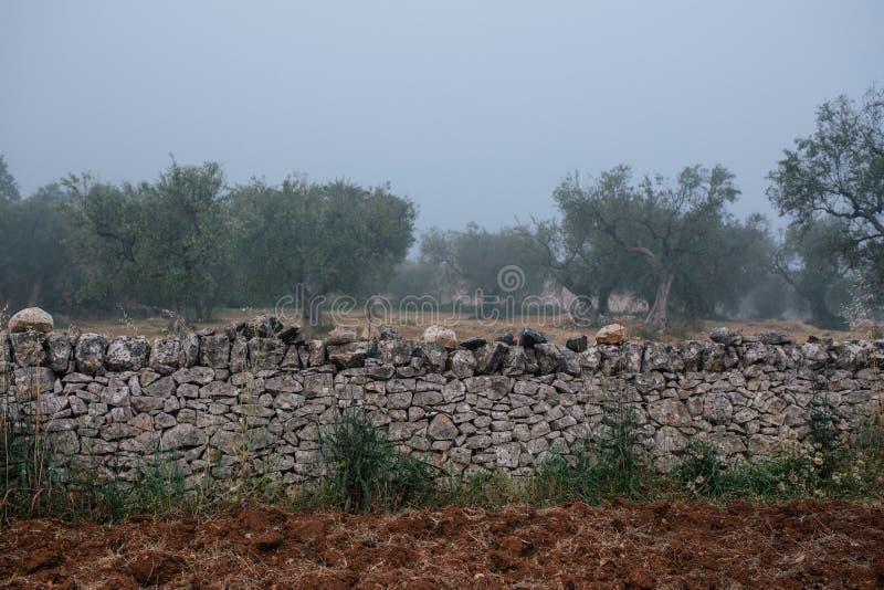 Barrière en pierre dans le village dans l'apulia d'alberobello de rues de ville de l'Italie Trullis images libres de droits