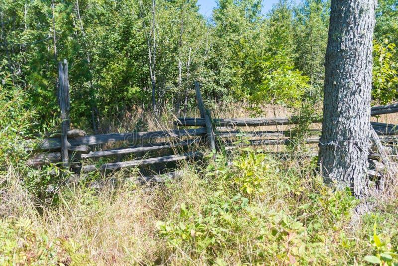 Barrière envahie de ferme de cèdre de rail fendu sur l'île de Manitoulin image stock