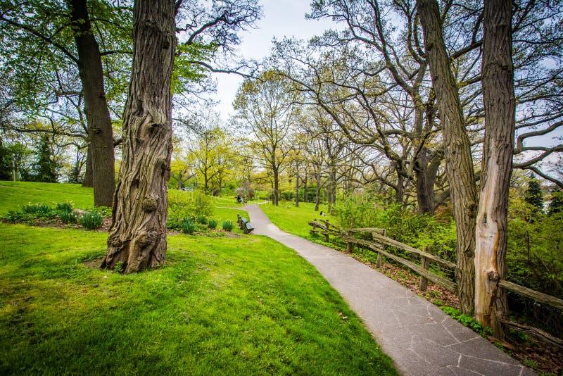 Barrière et arbres le long d'un passage couvert au haut parc, à Toronto, Ontari images stock