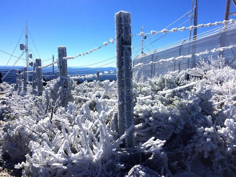 Barrière givrée pendant l'hiver images libres de droits