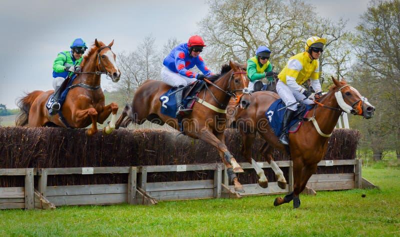 Barrière sautante de course de chevaux - Peper Harow images stock