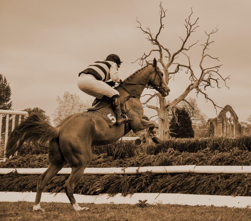Barrière sautante de course de chevaux - Peper Harow photos stock