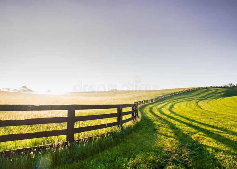 Barrière Snakes de cheval sa manière au-dessus de la colline images libres de droits