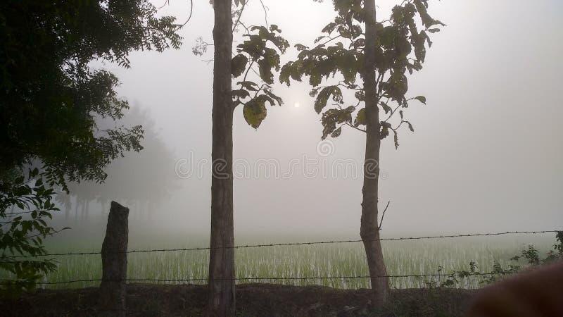Barrière trouble fraîche de fumée d'hiver de nature d'hiver simple frais de milieux photos stock