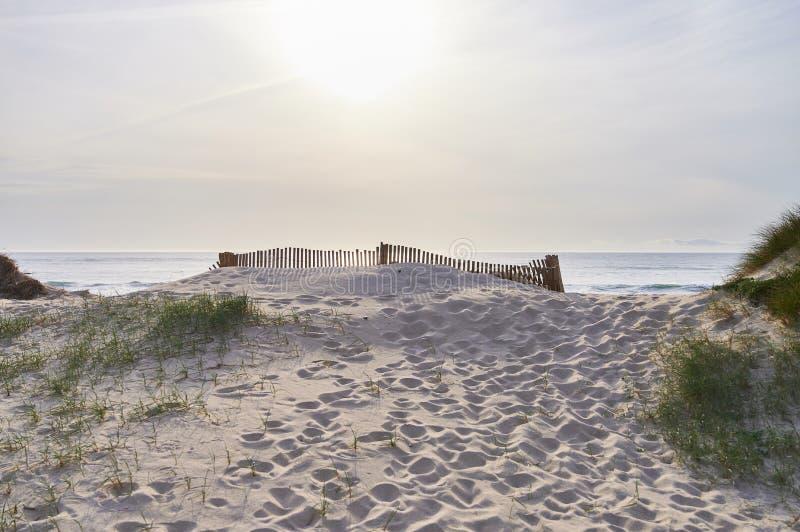 Barrières au-dessus de la dune photographie stock libre de droits