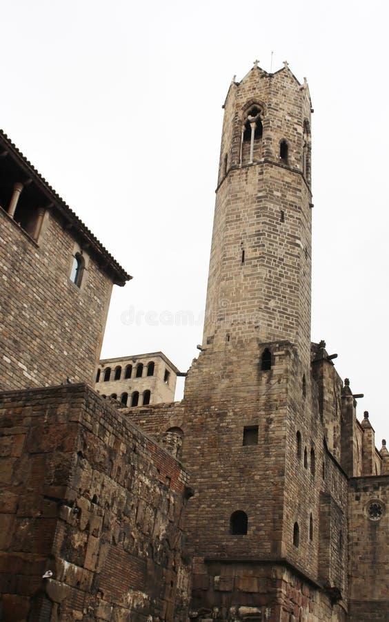 Barri Gotic-Viertel von Barcelona, Katalonien, Spanien Baum auf dem Gebiet stockbilder