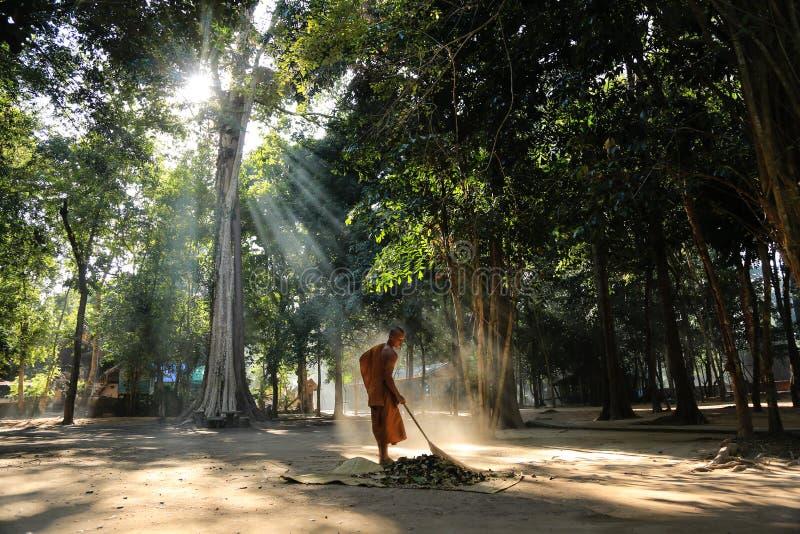 Download Barrido Del Monje La Yarda Del Templo Del Bosque Fotografía editorial - Imagen de hombre, persona: 64208182